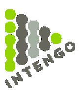 intengo-icon